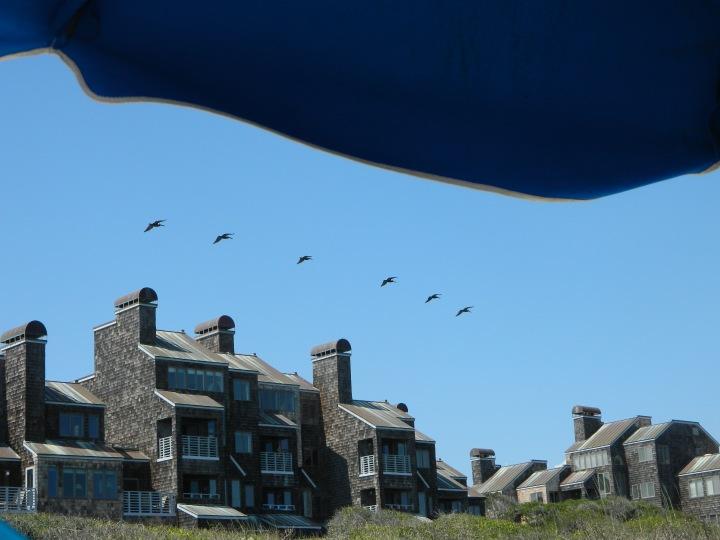 Windswept Villas @ Kiawah Island