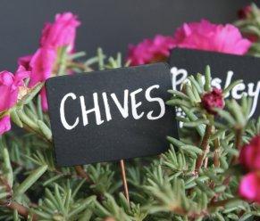 Chives Chalkboard Sign - Sierra Metal Design via Etsy